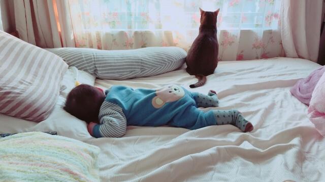 除菌水ジーアはこんな人におすすめ。 子供をウィルスからまもりたい人・ペットの匂いが気になる人