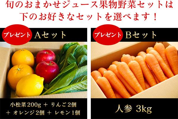 3点目 ジューサーが届いてすぐに搾れる野菜・果物セット付